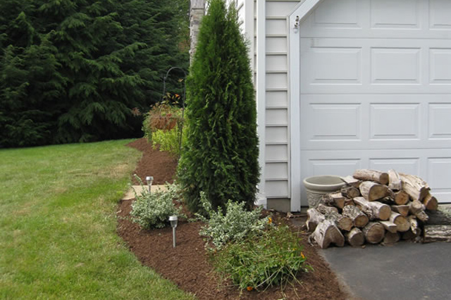 landscaping-services-in-redding-2